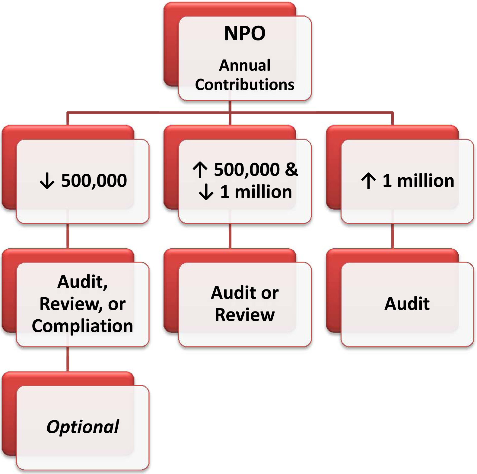 npo annual contributions audit review compilations